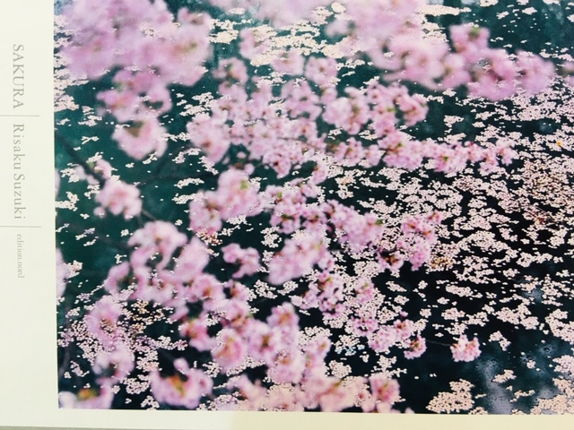 wilスタッフがおすすめ4月の本。写真集「SAKURA」福井の女性を応援するくらし情報、くらしくふくい。