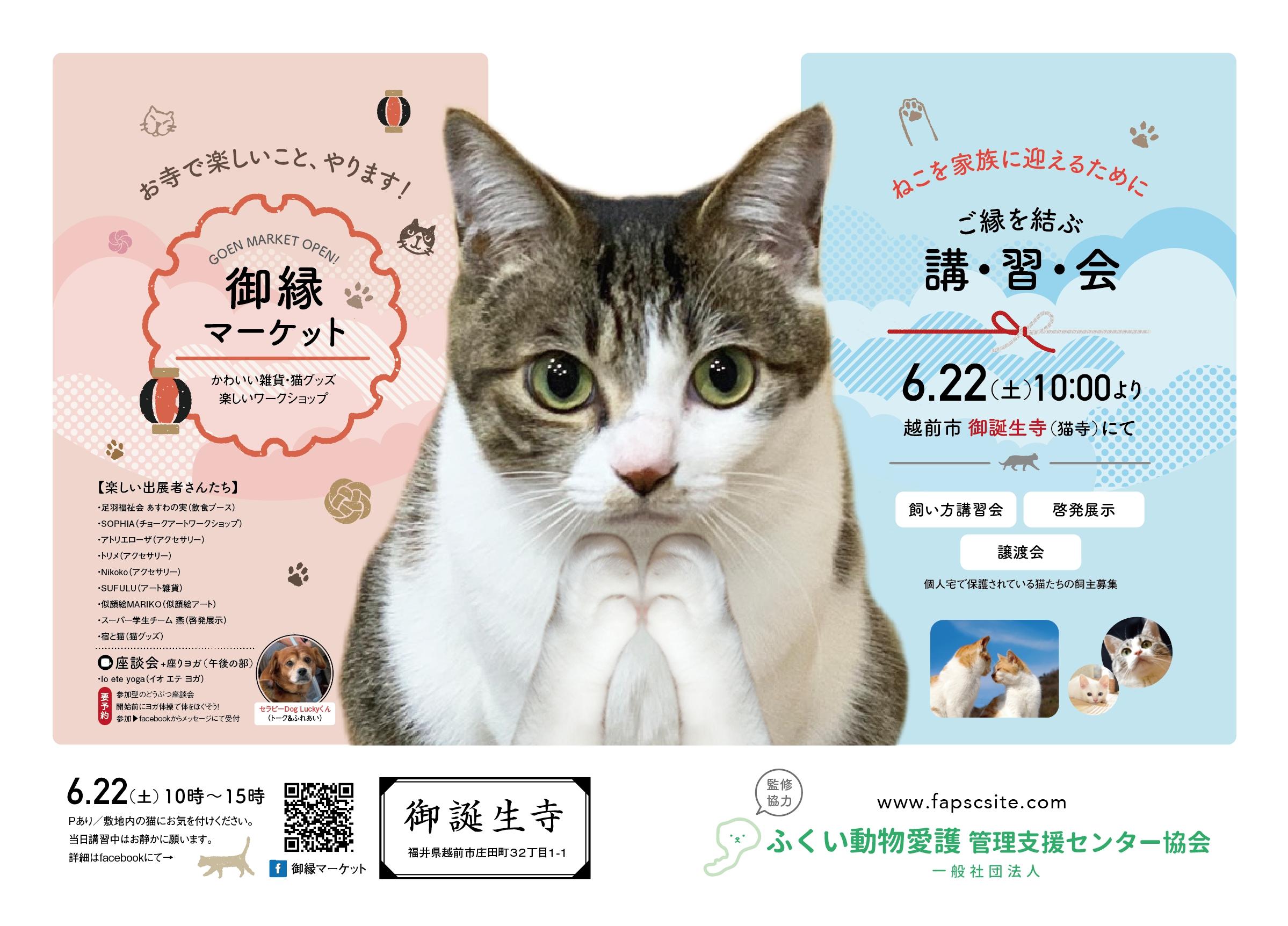 猫寺で有名な「御誕生寺」さんにて開催される猫にちなんだ楽しいマーケットのポスター。福井の女性を応援するくらし情報、くらしくふくい。