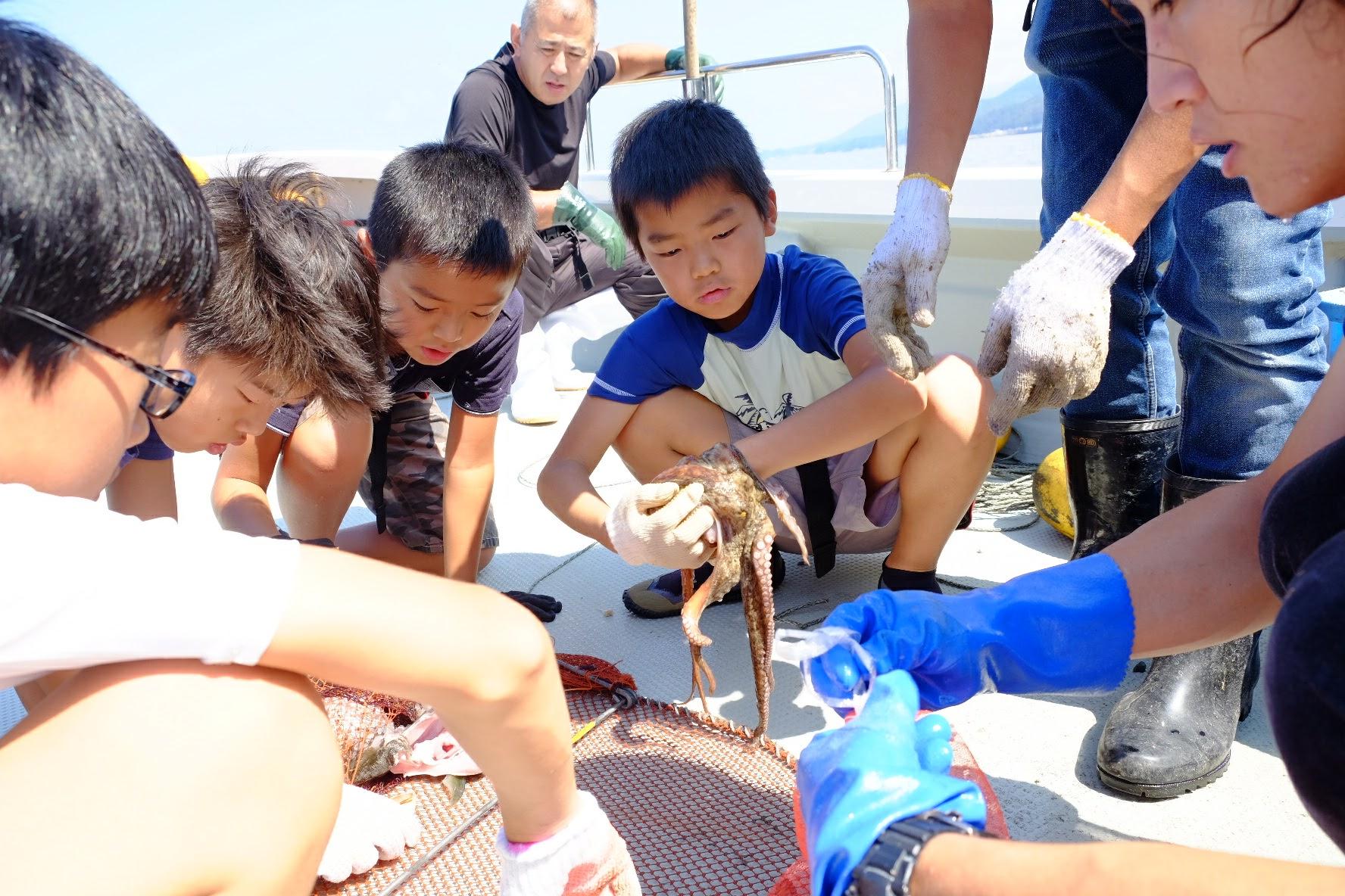 船に乗ってヌルヌルのタコを掴むたこかご漁の写真。