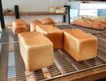 福井パン屋グリンベーカリーの食パン